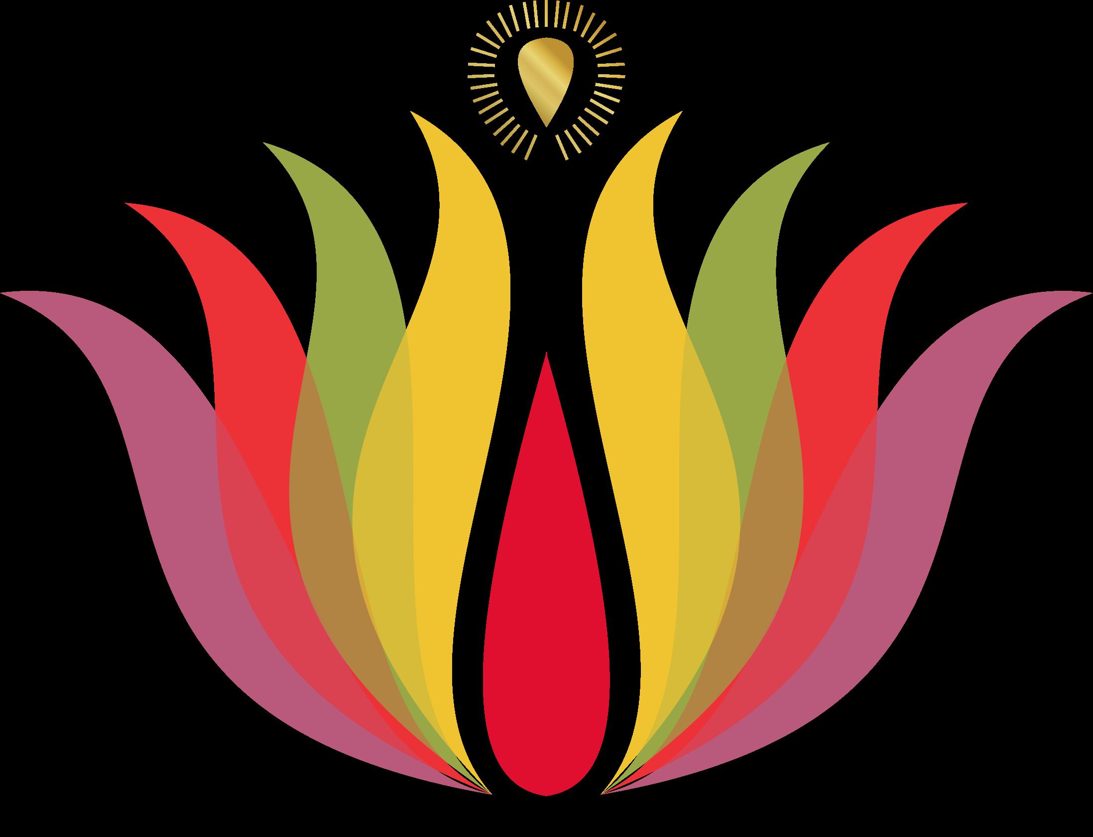 Vishal Sri Paul